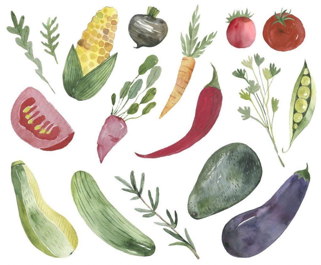 Frugter og grøntsager malet med akvarel