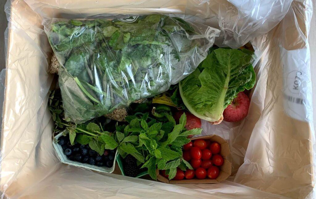 Indhold af grøntsagskasse fra Aarstiderne